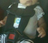siège bébé2